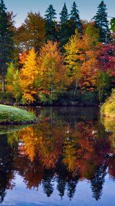 autumn-season